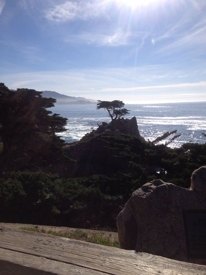 cypress-point